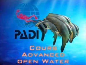 Formation PADI cours Advanced Open Water Equation plongée
